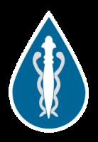 Água Vitalizada